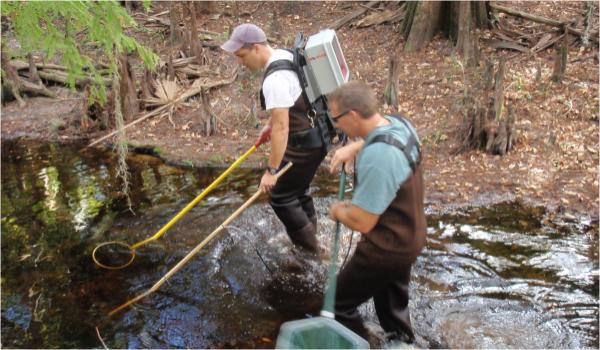 Ecological Services Bda Breedlove Dennis Amp Associates